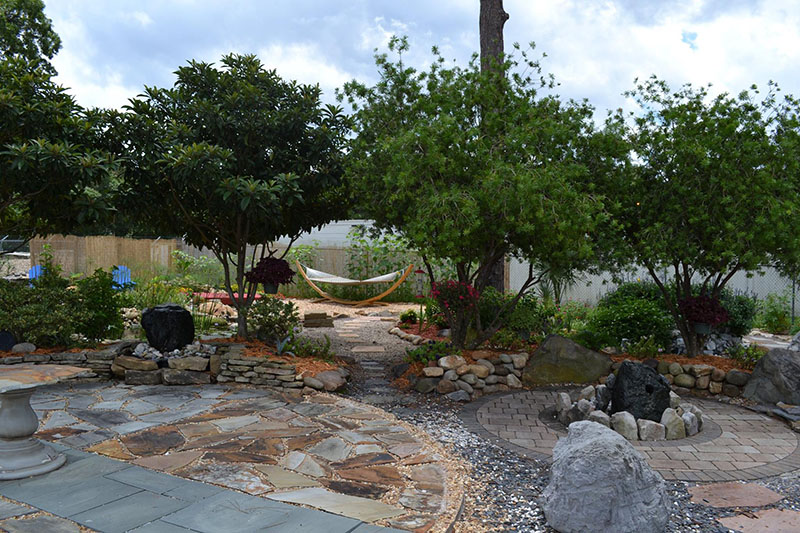Plants and trees landscaping, stone walkway and relaxation area