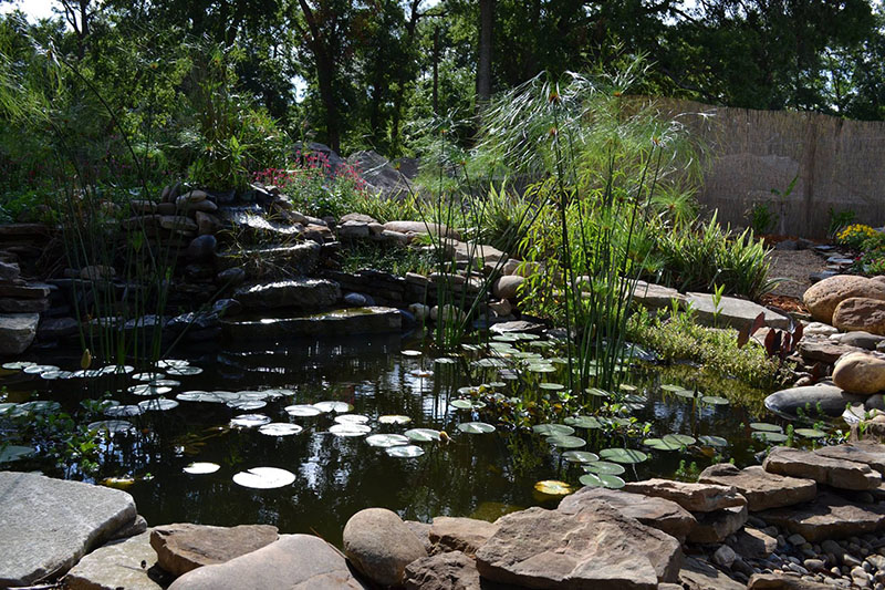 Large stone pond with water plants and landscaping by Earth Source Jax